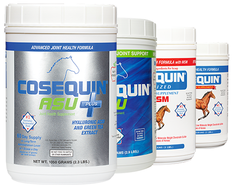 Joint Supplements for Horses | Cosequin®