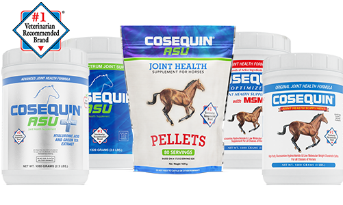 Cosequin Equine Products