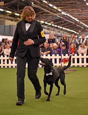 Linda Brennan - Owner and handler of the 2018 Masters Obedience Champion, Heart