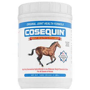 Cosequin Powder